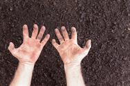 Bare hands with clenched expression over bare soil Stock Photos