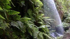 Detail of Waterfall The Lindens,in Island of La Palma. Slow Motion. Stock Footage