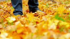 Autumn leaves in the park scatters walking passerby Stock Footage