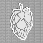 Gray Hop Flower Beer ingredient Stock Illustration