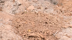 Digging. Throwing clay on the ground Stock Footage