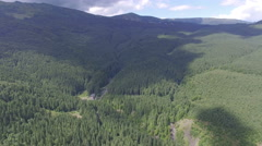 Aerial: mountains and forest Stock Footage