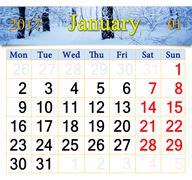 Calendar for January 2017 with birch grove Stock Illustration