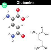 Glutamine proteinogenic amino acid Stock Illustration