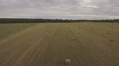Rolls of haystacks on the field.Aerial video Stock Footage