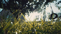Green Grass in front of Country Home on Sunny Day Stock Footage