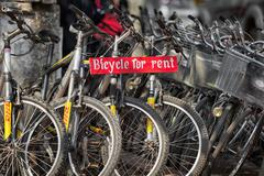 Bicycles for rent staying on the parking Stock Photos
