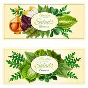 Salad greens and vegetable leaves banners set Stock Illustration