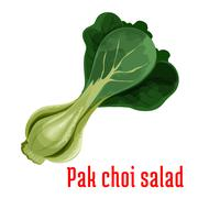 Bok choy or chinese cabbage vegetable icon Stock Illustration