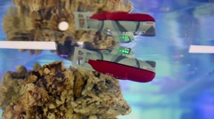Toy submarine moves near reefs in water, Moscow. Stock Footage