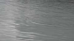 4k Water Ripples On Lake Nature. Level View Of A Pond.-Dan Stock Footage