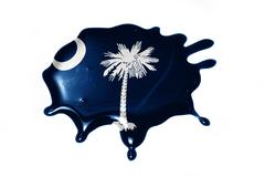 Blot with south carolina state flag Stock Illustration