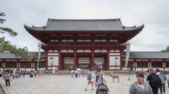Timelapse tourist walking at Todaiji Great Eastern Temple at Nara Kansai Japan Stock Footage