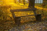 Bench in the autumn park Stock Photos