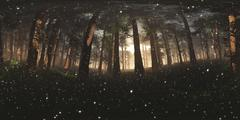 Epical Magic Forest Sunset with Fireflies VR360 3D Illustration Stock Illustration