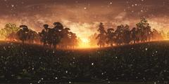 Epical Magic Forest Sunset with Fireflies VR360 Stock Illustration