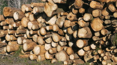 Pile of wood logs storage for industry Stock Footage