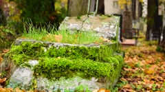 Tombstone With Moss In Fall Foliage Stock Footage