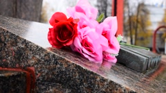 Flowers On The Monument Stock Footage