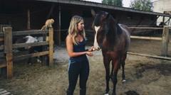 Woman Feeding a Horse an Apple on the Farm Stock Footage