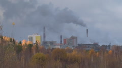 Pipe Plant and Forest Stock Footage