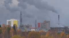 Pipe Plant in Fall Stock Footage