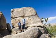 Brothers pose on a rock at yoshua tree national park near park boulevard Stock Photos