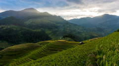 Time lapse - Rice fields on terraced of Mu Cang Chai, YenBai, Vietnam. Stock Footage