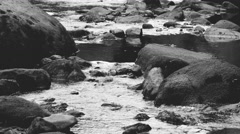 A little river flows in timelapse among chaotic stones and boulders. grayscale. Stock Footage
