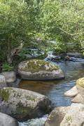 Aven river at Pont-Aven in Brittany Stock Photos