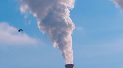 Huge clouds of smoke from industrial chimneys are closed  the blue sky Stock Footage