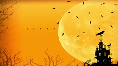 Happy Halloween spooky night card Stock Footage