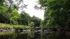 Two edited sequences of a river in a lush forest. Transition with an ink smudge. Stock Footage