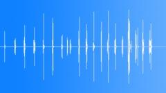 Footstep on gravel Sound Effect