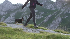 CLOSE UP: Happy young woman with her small pet dog on amazing hiking journey Stock Footage
