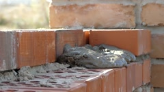 Hands of the Builder Put a Cement Mortar. Hand Makes the Masonry of Brick. Stock Footage