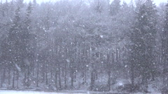 CLOSE UP: Heavy snow falling from the sky on tall trees and snowy plains Stock Footage