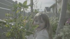 A young girl finds a lemon on a tree Stock Footage