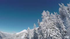 AERIAL: Fresh white snow covering sleeping trees and steep slope of the mountain Stock Footage