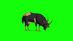 Black Domestic Goat Isolated on Green Screen Stock Footage