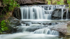 Time lapse - beautiful small waterfalls and plants (effect zoom) Stock Footage