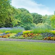 Summer park with beautiful flowerbed Stock Photos