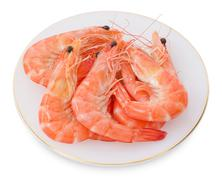 Cuisine and Food, Cooked Prawns or Tiger Shrimps in A White Plate. Kuvituskuvat