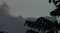 Sabah Borneo Malaysia Asia Rainforest Tree, clouds Stock Footage