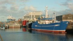 Fishing boats in Macduff Harbour Stock Footage