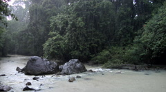 River in the jungle, Borneo Malaysia Stock Footage