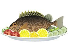 Cooked fish and raw vegetables on a plate Stock Illustration