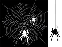 Vector spiders and web Stock Illustration