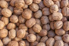 Walnuts. Background of walnuts Stock Photos
