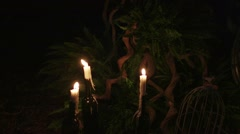 A lot of candles in the forest at night. Stock Footage
